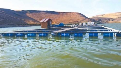 Tidikilt, nouveau pôle de pisciculture